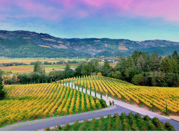 Napa Valley Tours, Hotels, Restaurants, Accommodation, Wineries – Travel in USA